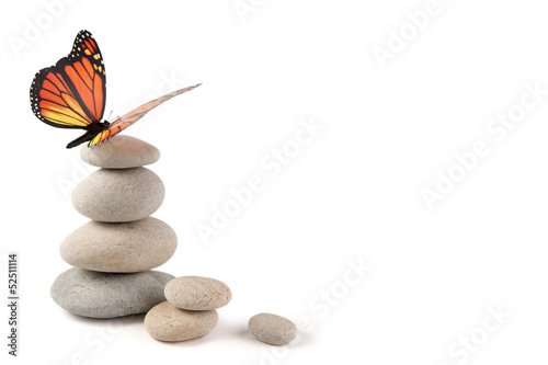 Fotografie, Obraz  Balanced stones with butterfly