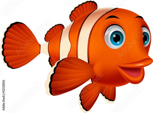 kreskowka-ladny-klaun-ryb
