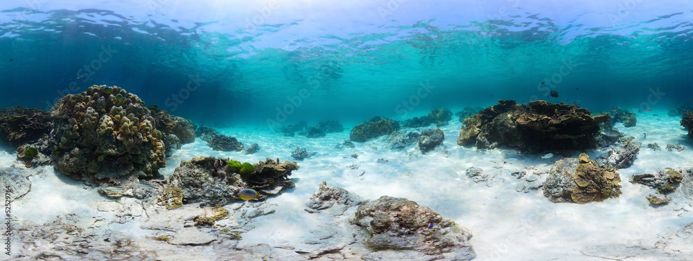 Fototapeta Sea