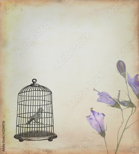 Acrylic Prints Birds in cages Bird cage with bird drawn in retro style