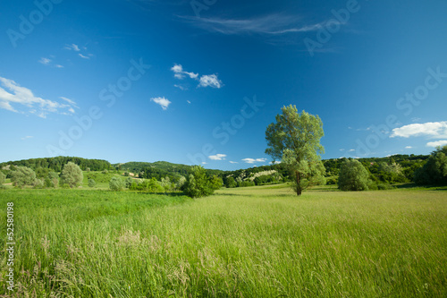 Beautiful landscape - 52580198