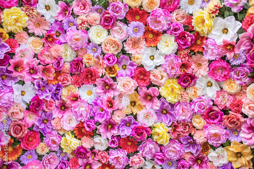Fototapeta Ściana kwiatów obraz