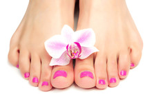 Pink Pedicure With A Orchid Fl...