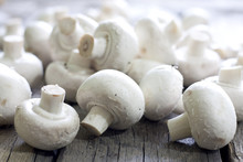 Champignon On Wooden Boards Closeup