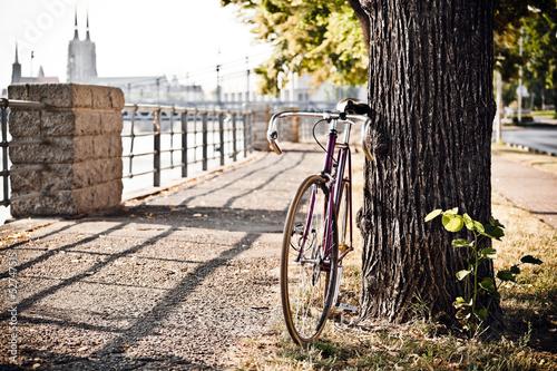 Aluminium Prints Bicycle Road bicycle on city street