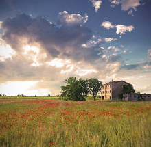 Pictoresque Landscape Of A Poppy Field And A Country House In It