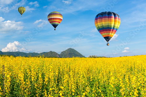 Photo  Hot air balloon over yellow flower fields against blue sky