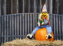 Scarecrow Sitting On A Pumpkin...