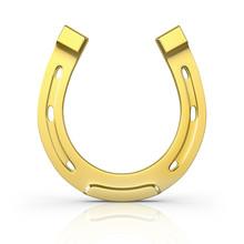 Single Scratched Golden Horseshoe