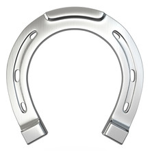 Single Scratched Silver Horseshoe