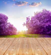 Spring Background With Wooden ...