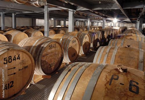 Cognac barrels in cellar