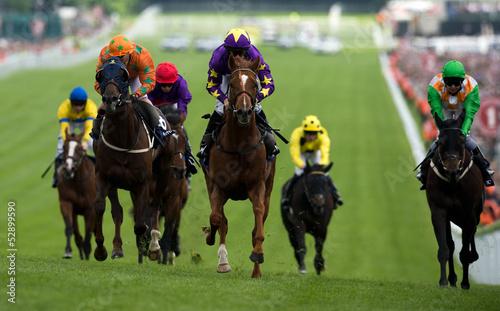 In de dag Paarden Horse Racing