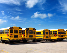 American School Bus Row Under ...