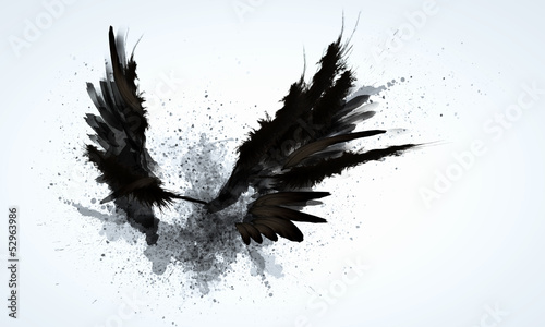 Cadres-photo bureau Aigle Black wings