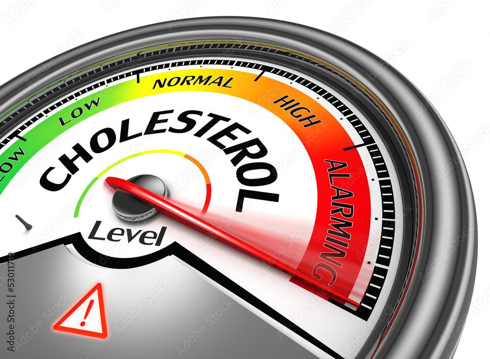 Fototapety, obrazy: cholesterol level conceptual meter