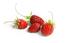 Wild Strawberry On White Background, Close Up