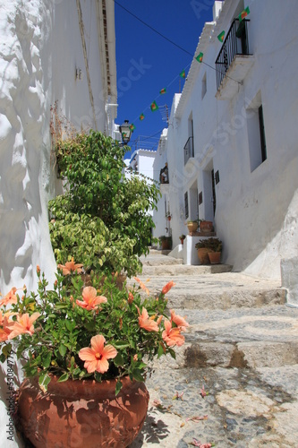 Ruelle de Frigiliana, Andalousie - 53084776