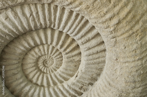 Photo sur Aluminium Spirale Texture of stone