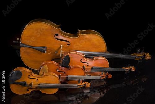 Fotografie, Obraz  Two Violins, Viola and Cello