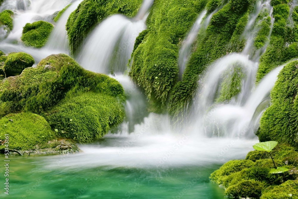 Fototapeta Natural spring waterfall