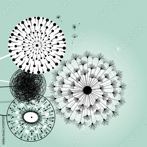 wonderful dandelions - 53197597