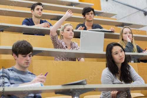 Students having a lesson in the lecture hall Poster Mural XXL
