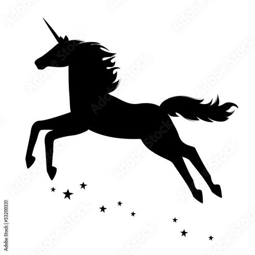 Fotografie, Obraz  Silhouette of a beautiful  magical unicorn.