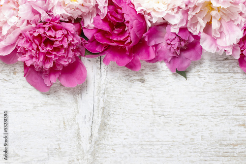 Stunning pink peonies on white rustic wooden background. Copy sp