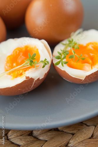 Fototapeta jajko na miękko obraz