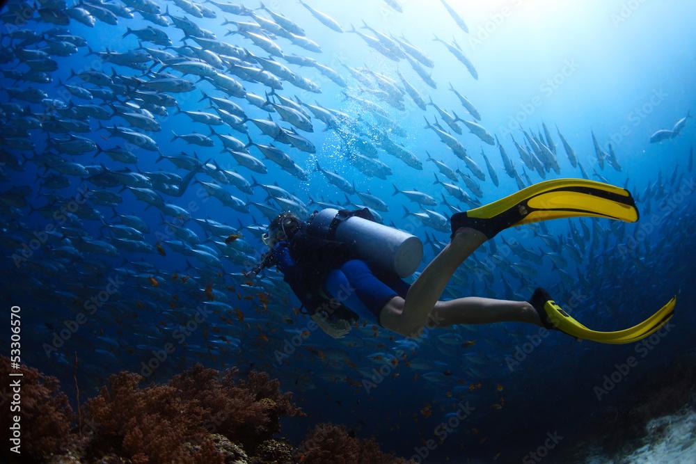 Fototapeta Diver