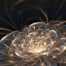 Dark Blue Fractal Flower With Golden Rays