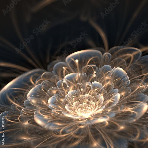 kwiat-ze-zlotymi-promieniami