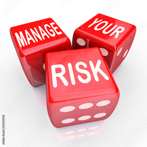 Fotografie, Obraz  Manage Your Risk Words Dice Reduce Costs Liabilities