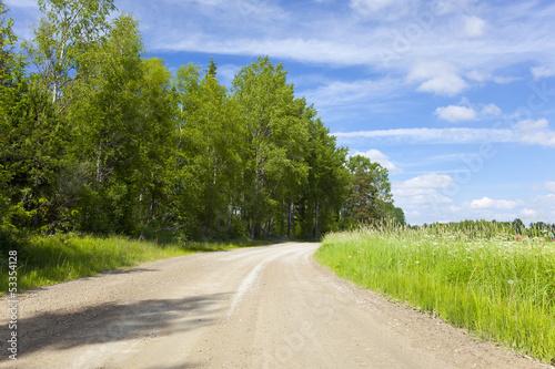 Fototapeta Vibrant summer road nice blue sky and white clouds obraz na płótnie