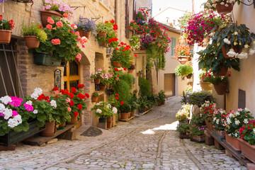 Fototapeta uliczka kwiatowa we Włoszech