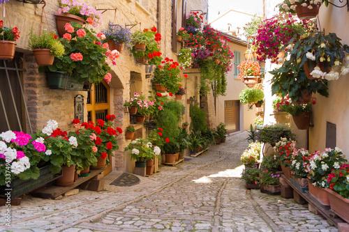 Obraz Aleja z kwiatami, Spello - fototapety do salonu