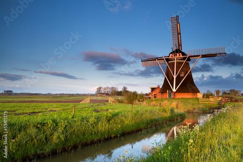 Garden Poster Mills Dutch windmill in morning sunrise sunlight