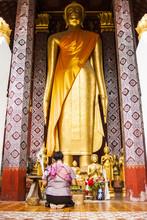 Pray A Standing Buddha In Luangprabang, Lao