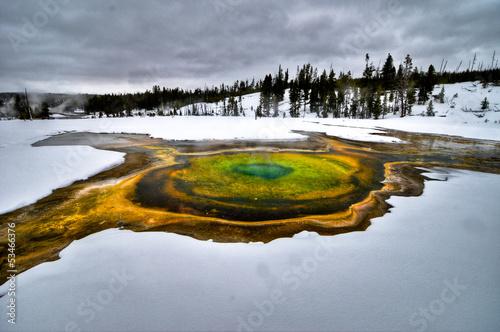 Obraz na plátne Geyser in Yellowstone National Park