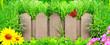 Leinwandbild Motiv Wooden fence, flowers and green grass