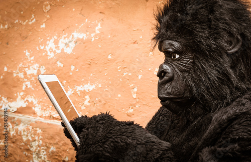 Photo  Gorilla with digital Tablet