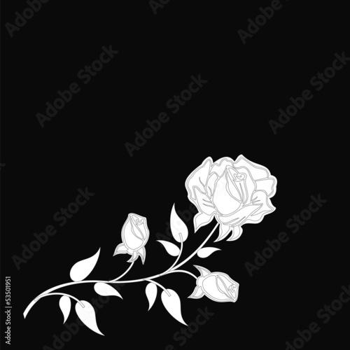 Staande foto Bloemen zwart wit flowers patterns on a black background..