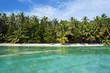Tropical beach with lush vegetation