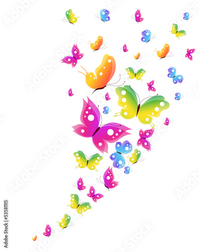 Poster Vogels, bijen butterfly,butterflies vector