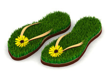 Two Sandals With Green Grass A...