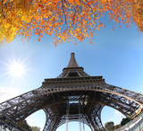 Eiffel Tower with autumn leaves in Paris, France