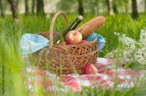 Stickers pour portes Pique-nique picnic