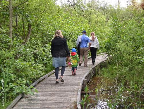 promenade en famille au parc naturel du Rohart à Camierss Wall mural