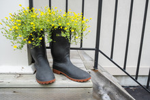 Flowers In A Boot Planter